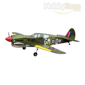 The World Models P-40 Warhawk