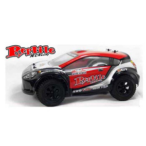 HSP(HISPEED) 1/18th 4WD Electric Power R/C Sport Rally Racing