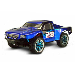 HSP(HISPEED) 1/16 TOP Brushless Rally