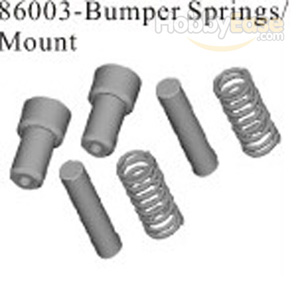 Bumper Springs/Mount