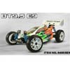 HSP(HISPEED) 1/8 Brushless Buggy [94885-E9]
